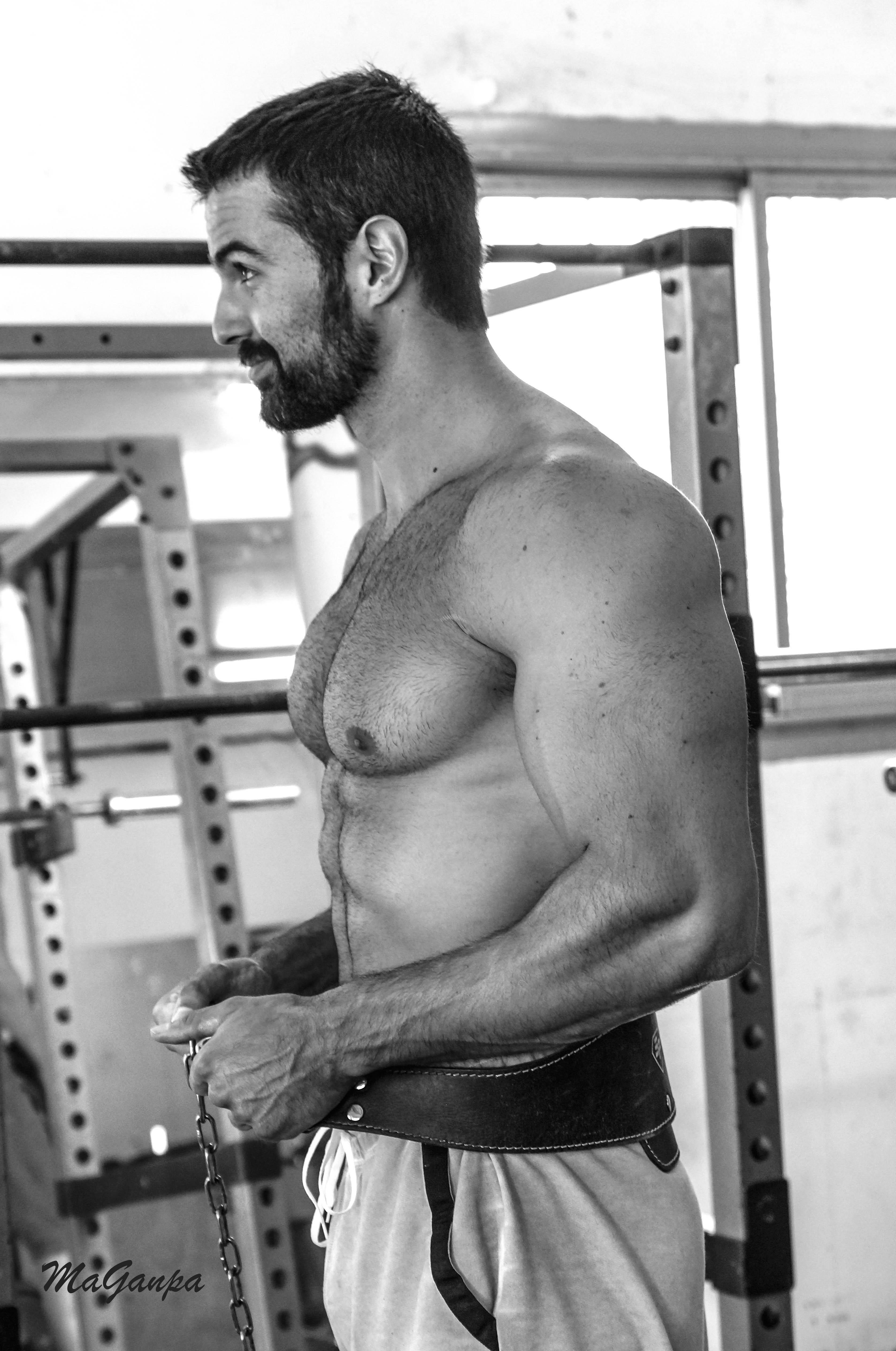 Cycles en musculation