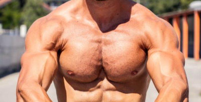 Exercice pectoraux