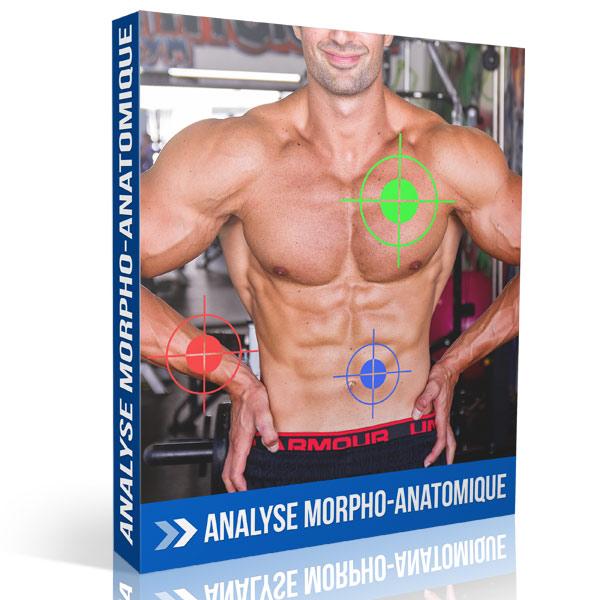 Analyse morpho-anatomique en musculation