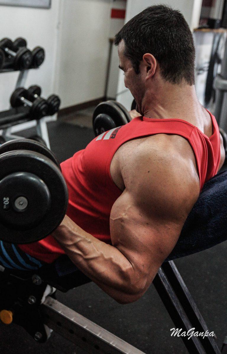 Curl incliné ou traction prise supination pour les biceps en musculation ?